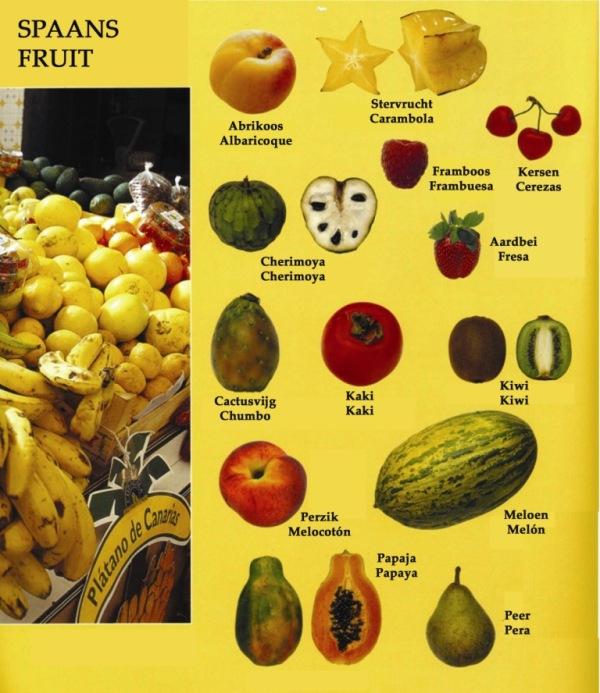 fruit copia1