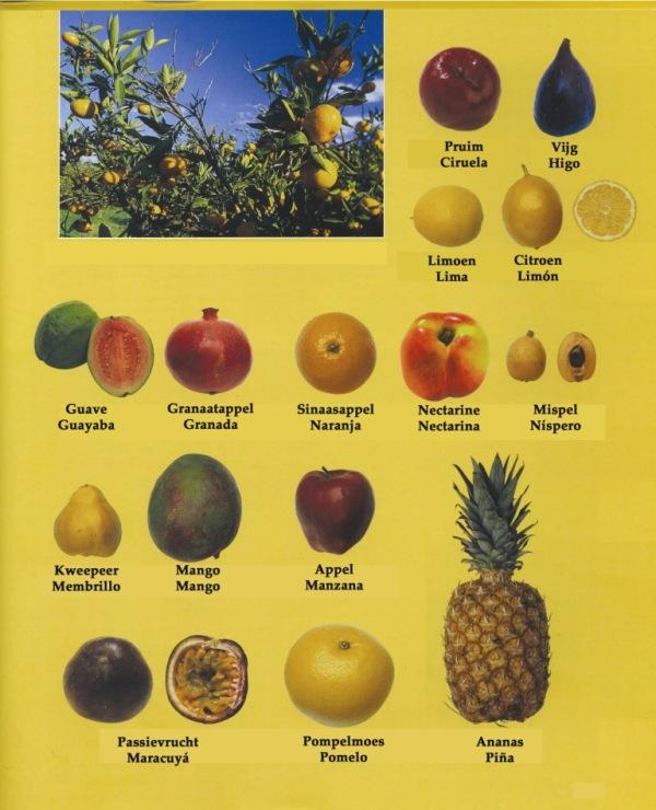 fruit2 copia